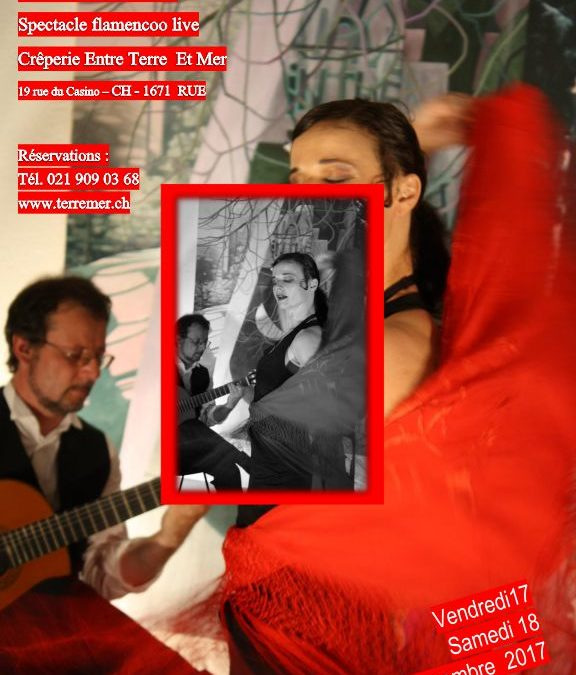 Hechizo Flamenco Group