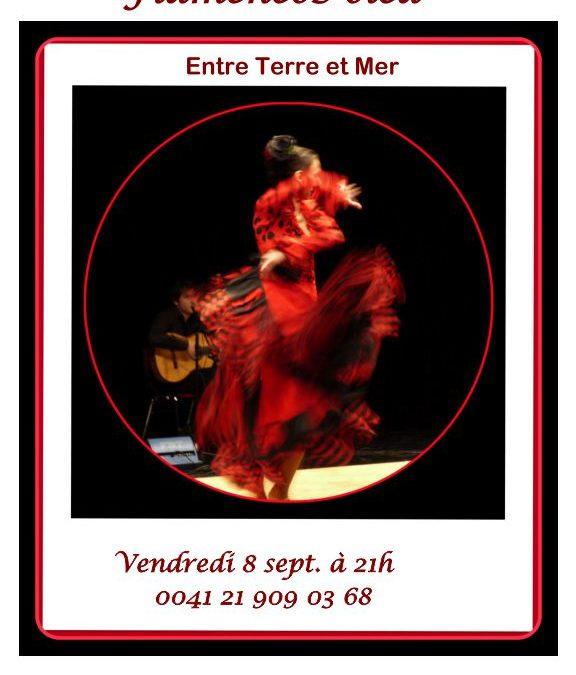 Flamencos Oléa