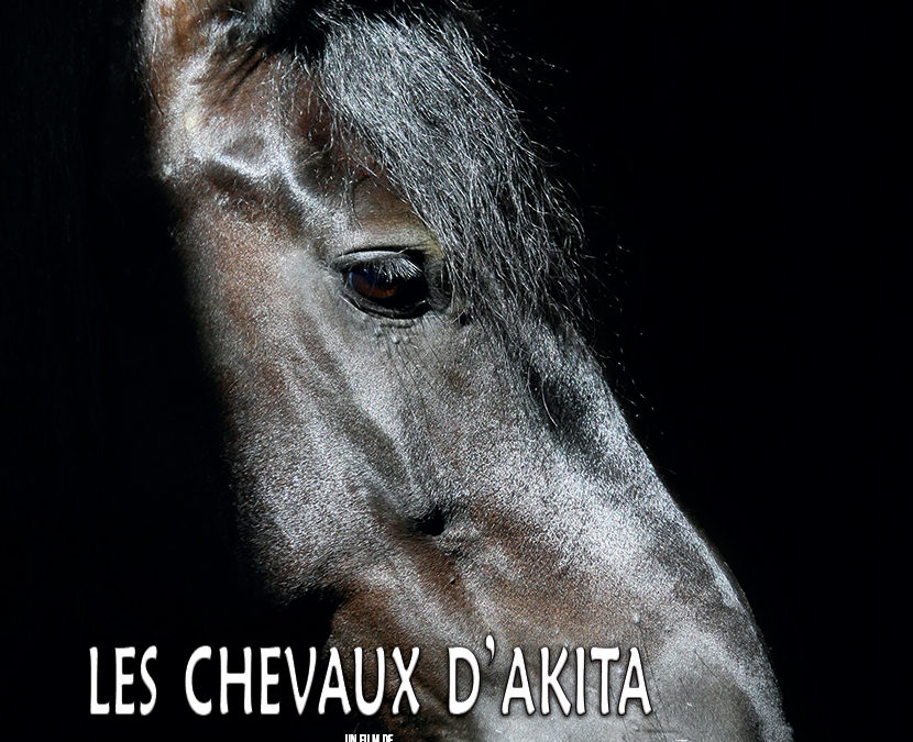 Les chevaux d'Akita (film)